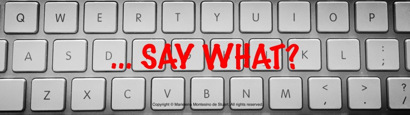 SAY WHAT? Copyright © Marielena Montesino de Stuart. All rights reserved