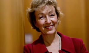Andrea Leadsom - UK's new Secretary of State for Environment, Food and Rural Affairs